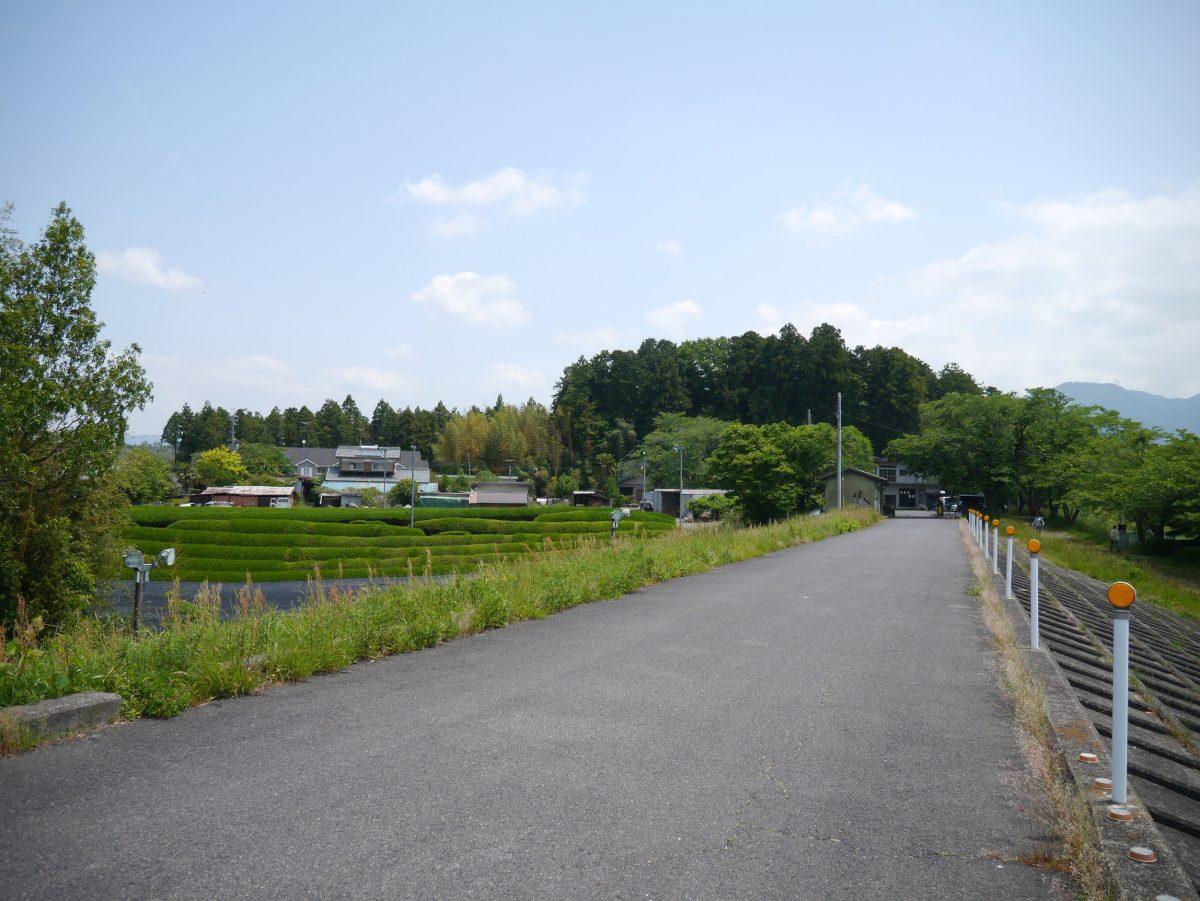 中野城跡全景(南より)+